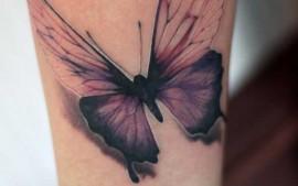 Schmetterling tattoo stuttgart realistisch
